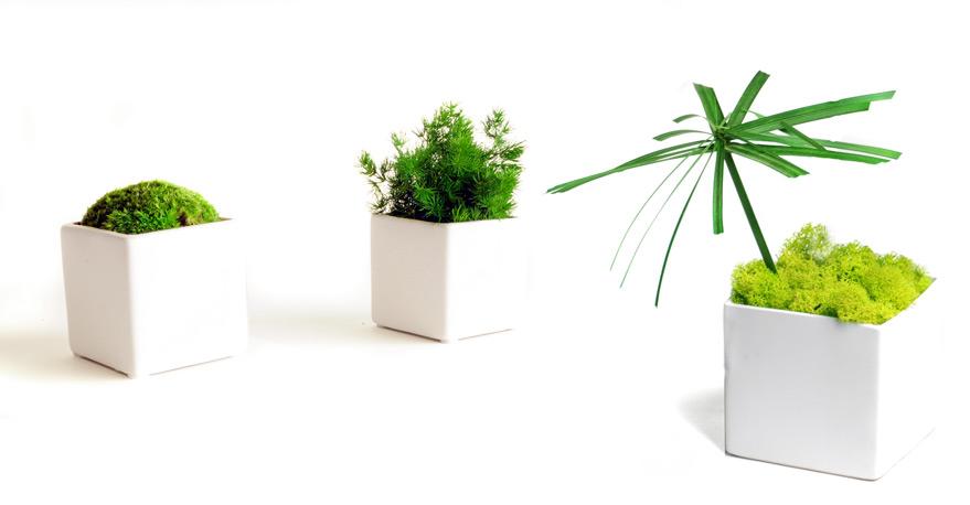 mini-jar-premium