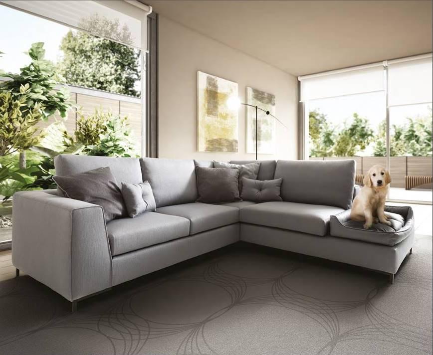 divano per cani