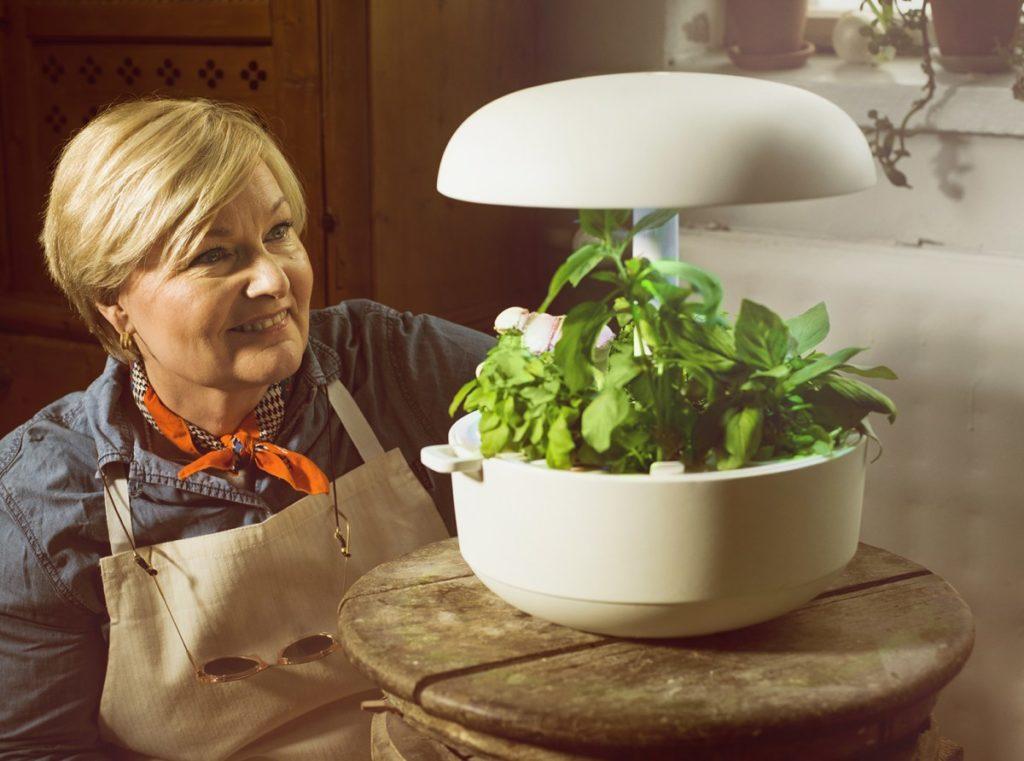 plantui germinatore idroponico